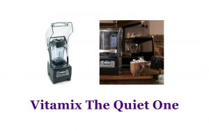 Blender Singapore, Vitamix The Quiet One, Commercial Use Blender