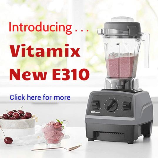 Vitamix E310